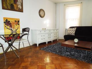 Charming Quaint Warm  Studio Apt-Manhattan-12 min. - Brooklyn vacation rentals