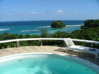 Nice Villa with Internet Access and Television - Portland Parish vacation rentals