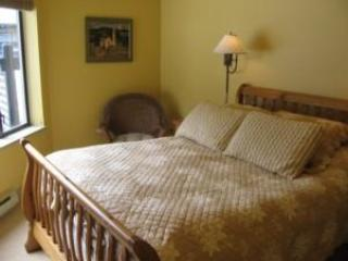 Cozy Condo with Internet Access and Fireplace - Whistler vacation rentals