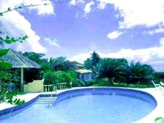 Lovely Villa with Deck and Television - Speightstown vacation rentals