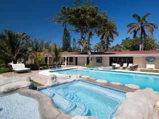 Gorgeous 4 bedroom Villa in Saint Ann Parish - Saint Ann Parish vacation rentals