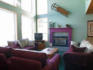 Ski-in/out luxury 4 bed home - Silver Star Mountain vacation rentals