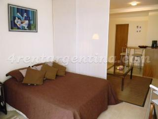 Bustamante and Charcas - Buenos Aires vacation rentals