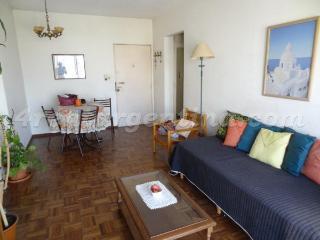 Lerma and Scalabrini Ortiz - Buenos Aires vacation rentals