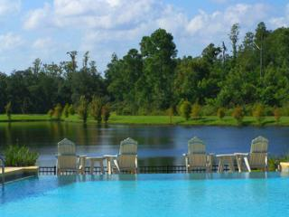 Pine View Serenity, Beautiful Condo with Hot Tub and Gym - Kissimmee vacation rentals