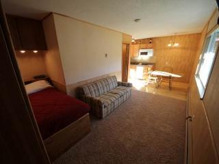 Nice Fraser Studio rental with Satellite Or Cable TV - Fraser vacation rentals