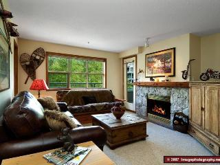 WHISTLER CHALLET - Whistler vacation rentals