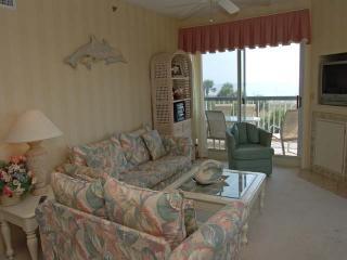 313 Barrington Court - Hilton Head vacation rentals