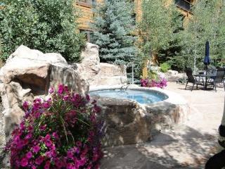 Keystone: 8852 The Springs Immaculate 1 bedroom 75 yards from Gondola - Keystone vacation rentals