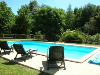 Lovely House with Internet Access and Dishwasher - Pont-du-Casse vacation rentals