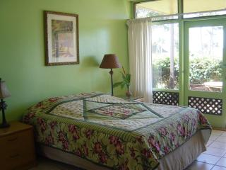 Fully Furnished Studio Condo in Paradise - Molokai vacation rentals