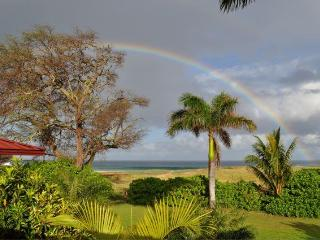 7 Acre Estate on Papohaku Beach Sleeps 12 - Maunaloa vacation rentals