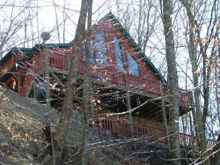 Beautiful Cabin with Deck and Internet Access - Lake Nantahala vacation rentals