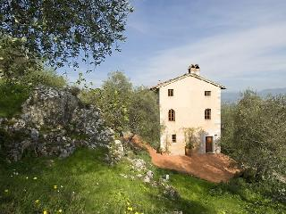 Villa Oliva Holiday house near Lucca - Lucca vacation rentals