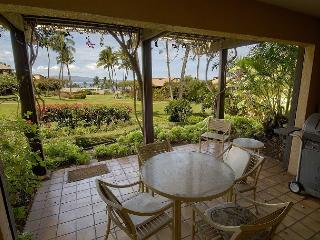 1 bedroom Apartment with Internet Access in Wailea - Wailea vacation rentals
