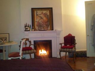 TERRACE LARGE STUDIO FAB WALK TO CENTRAL PARK! - New Rochelle vacation rentals