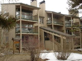 Super 2 BR/2 BA House in Keystone (2148 The Pines) - Keystone vacation rentals