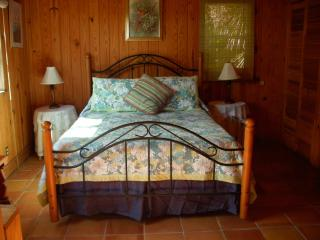 Hideaway Bahamas Beach Cottage 50ft from beach . - Grand Bahama vacation rentals