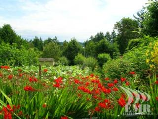 Tranquil and Stunning Victoria 4 Bedroom Lake View and Acreage Estate - Saanichton vacation rentals