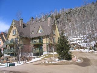 Beautiful Condo in Le Plateau - Sainte Agathe des Monts vacation rentals