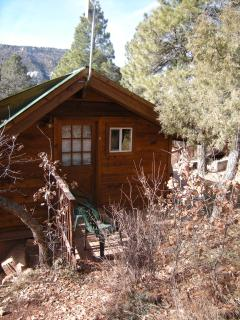 Animas Valley Hideaway in Durango from $75 a nite! - Durango vacation rentals