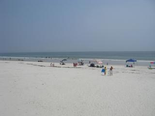 1st Floor 2/2 Awesome Oceanview Condo Castle Reef - New Smyrna Beach vacation rentals