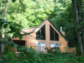 Five Private Acres Along Active Trout Stream - Robbinsville vacation rentals