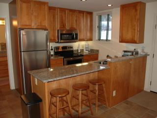 Slopeside 2BR/2BA Tamarack Townhouse - Snowmass Village vacation rentals