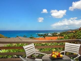 Amazing Views Hale - 270 degree Stunning Views from 2 Story Poipu Beach House - Poipu vacation rentals