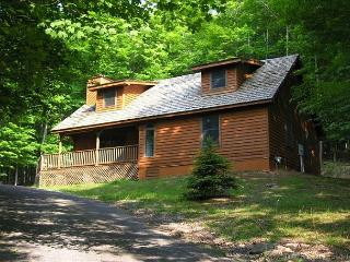 Perfectly private pet-friendly mountain home has all the comforts of home. - Canaan Valley vacation rentals