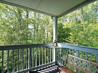 Amazingly affordable lodging in the center of Canaan Valley! - Canaan Valley vacation rentals
