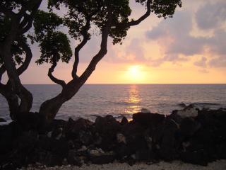 KONA ISLE - Truly Unique Oceanfront/Garden Condo - Kailua-Kona vacation rentals