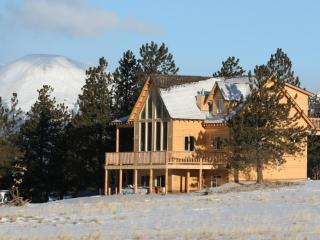 Beautiful Cabin with Deck and Internet Access - Buena Vista vacation rentals