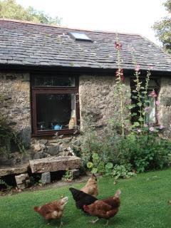 Stick Cottage, Dwyran, Isle of Anglesey, sleeps 3 - Dwyran vacation rentals