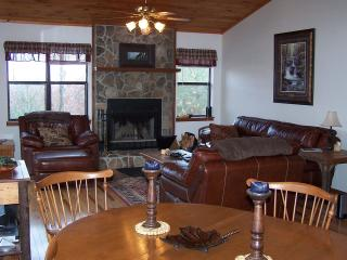 """Eagles Nest 2 Rest"" Cabin, WiFi- Great Views! - Robbinsville vacation rentals"