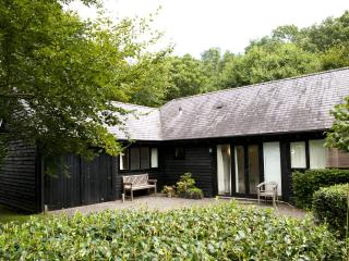 A lovely secluded 1 bed cottage in rural Wiltshire - Upper Seagry vacation rentals