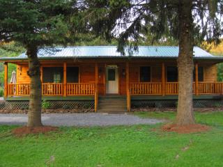 The Red House River Cabin - Catskills vacation rentals