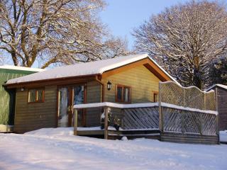 1 bedroom Log Cabin in Swansea Valley, Wales UK - Swansea vacation rentals