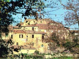 Beautiful Tuscany Villa - San Lorenzo a Merse vacation rentals