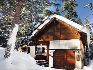 Upscale Family Chalet with Best Backyard in Tahoe Donner *Hot tub Wifi - Truckee vacation rentals