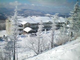 Village condo 3br/2ba- Fall $150 night/$800 week - Snowshoe vacation rentals