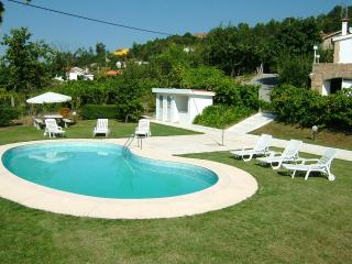 3 bdr Villa panoramic pool and AC in bedrooms - Cinfaes vacation rentals