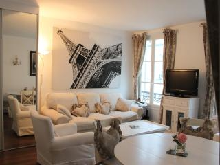 Stylish  apartment in Paris near the Eiffel Tower - Paris vacation rentals