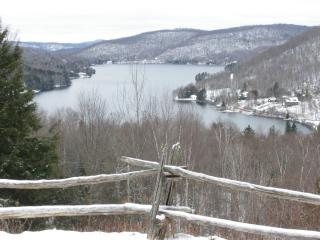 Mont Tremblant Lakeview Terrace - A Real Gem - Loo - Mont Tremblant vacation rentals
