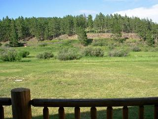 Black Hills Vacation Rental Cabins - Hill City SD - Hill City vacation rentals