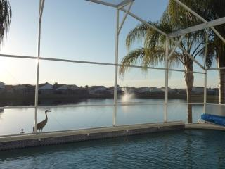 Lake View Villa Orlando - Davenport vacation rentals