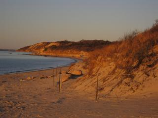 Charming Lambert's Cove Beach Quintessential Cape - West Tisbury vacation rentals