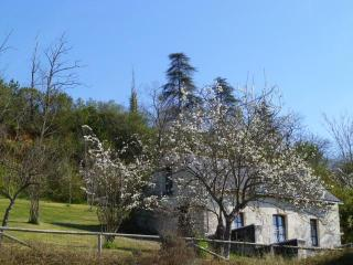 Nice House with Internet Access and Dishwasher - Chinon vacation rentals