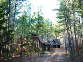 Retreat in the Pines - Mineola vacation rentals