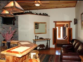 Gorgeous Condo with Internet Access and A/C - Afton vacation rentals